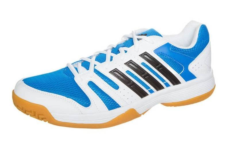 Adidas Volley Ligra Men - Blue White